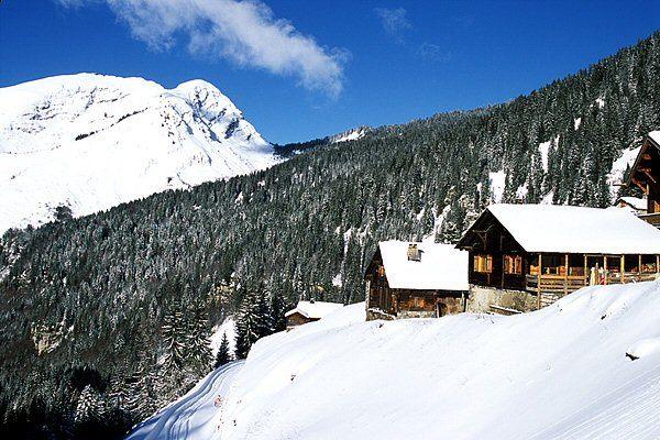 Lyžování a zimní dovolená Montriond (Portes du Soleil, Francie)