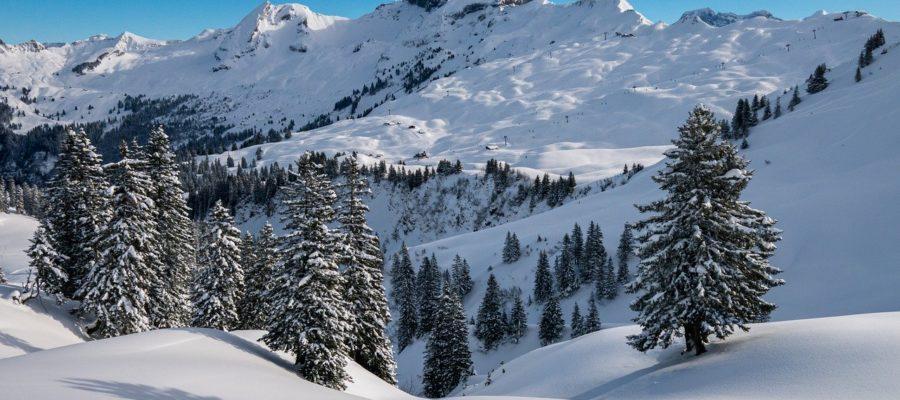Winter Hochybrig